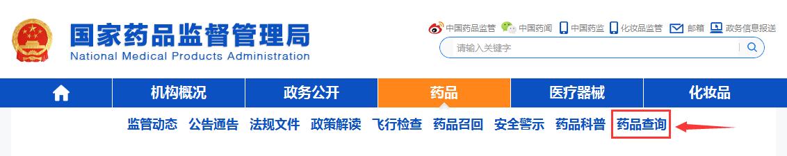 国药准字Z河西雷丸片国家药品查询步骤2